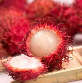 红毛丹是哪里的特产 红毛丹在中国海南最为常见