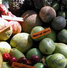 """进口水果是真的假的 4招鉴别真假""""洋水果"""""""