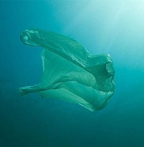 塑料袋有什么妙用