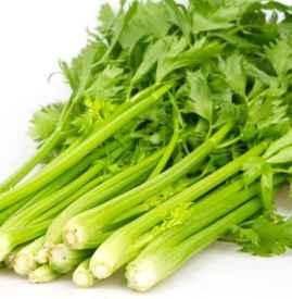芹菜能降高血压吗