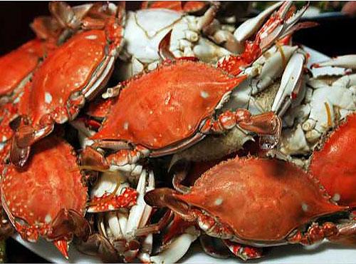 螃蟹的做法大全 分享20种螃蟹花样做法