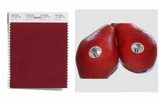红梨色是什么颜色 红梨色搭配什么颜色