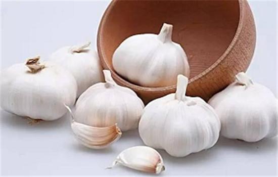 大蒜祛斑效果好不好 小小蒜头也能美容