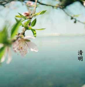 广东清明节的习俗有哪些的禁忌