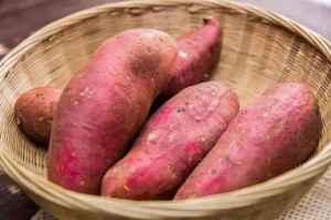 红薯发霉了切掉能吃吗 不慎吃了发霉的红薯怎么办
