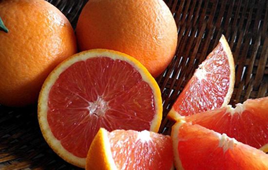 冰糖橙和脐橙的区别 口感差异外形不一快来学习