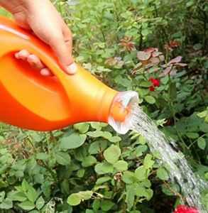 空調出來的水可以澆花嗎 空調冷凝水澆花好不好