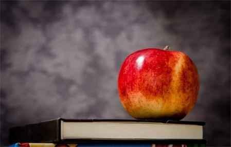 苹果减肥法吃什么苹果 苹果减肥期吃几个苹果(图2)