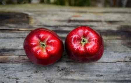 苹果减肥法可以吃鸡蛋吗 苹果减肥法做法(图1)