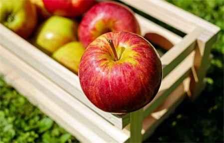 苹果减肥法可以吃鸡蛋吗 苹果减肥法做法(图3)