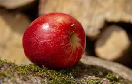 苹果减肥法不能喝水吗 苹果减肥的基本知识(图3)