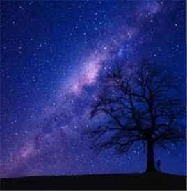 天秤座的上升星座是什么座 天秤座的上升星座查询