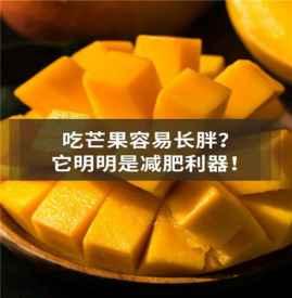 吃芒果能減肥是真的嗎 芒果的熱量是多少