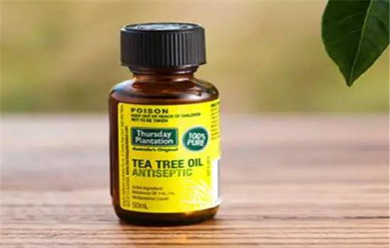【美天棋牌】星期四农庄茶树精油怎么样 澳洲最好卖的茶树精油