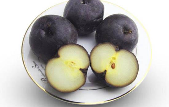冻梨为什么用冷水比热水解冻快 冻梨用冷水泡多久