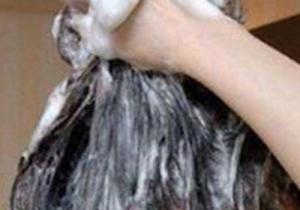 啤酒洗头头发会变黄吗 ?啤酒洗头可以去油吗