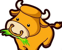 生肖牛的相处方法  做事很稳重待人温和