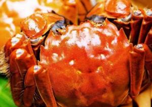大闸蟹为什么要脱壳 ?螃蟹一生中要脱壳多少次