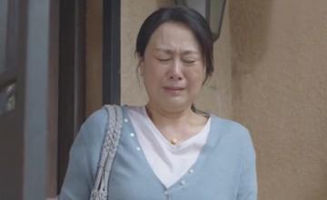 蔡菊英是真的喜歡南建龍嗎?最后她和南建龍離婚了嗎?