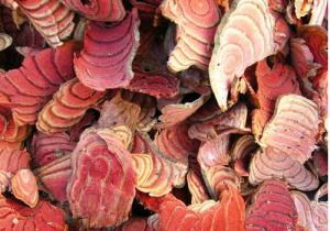 鸡血藤月经期可以吃吗 鸡血藤和大血藤的区别
