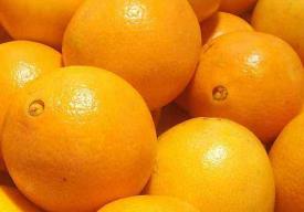 吃了羊肉可以吃橙子吗 吃了羊肉多久可以吃橙子