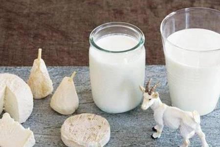 羊奶粉的功效,羊奶粉可以空腹喝吗?