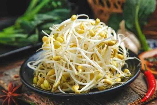 豆芽怎么吃减肥 可以做成哪些美食?