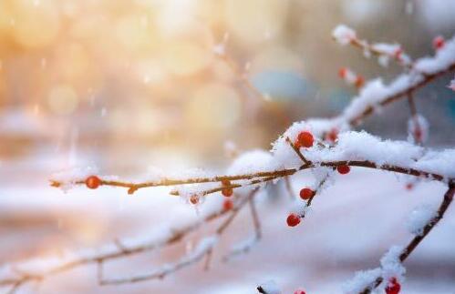 2021-2022年冬天预计是冷冬还是暖冬 2022年过年会冷吗