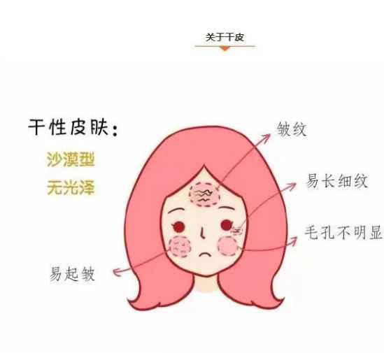 什么是干性皮肤