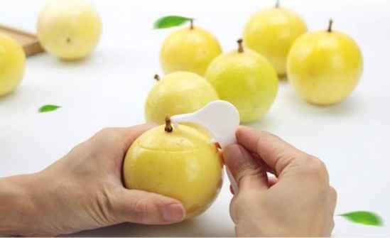 吃剩的百香果核,种成了百香果树 - 罗杰军 - 羅傑軍      博客